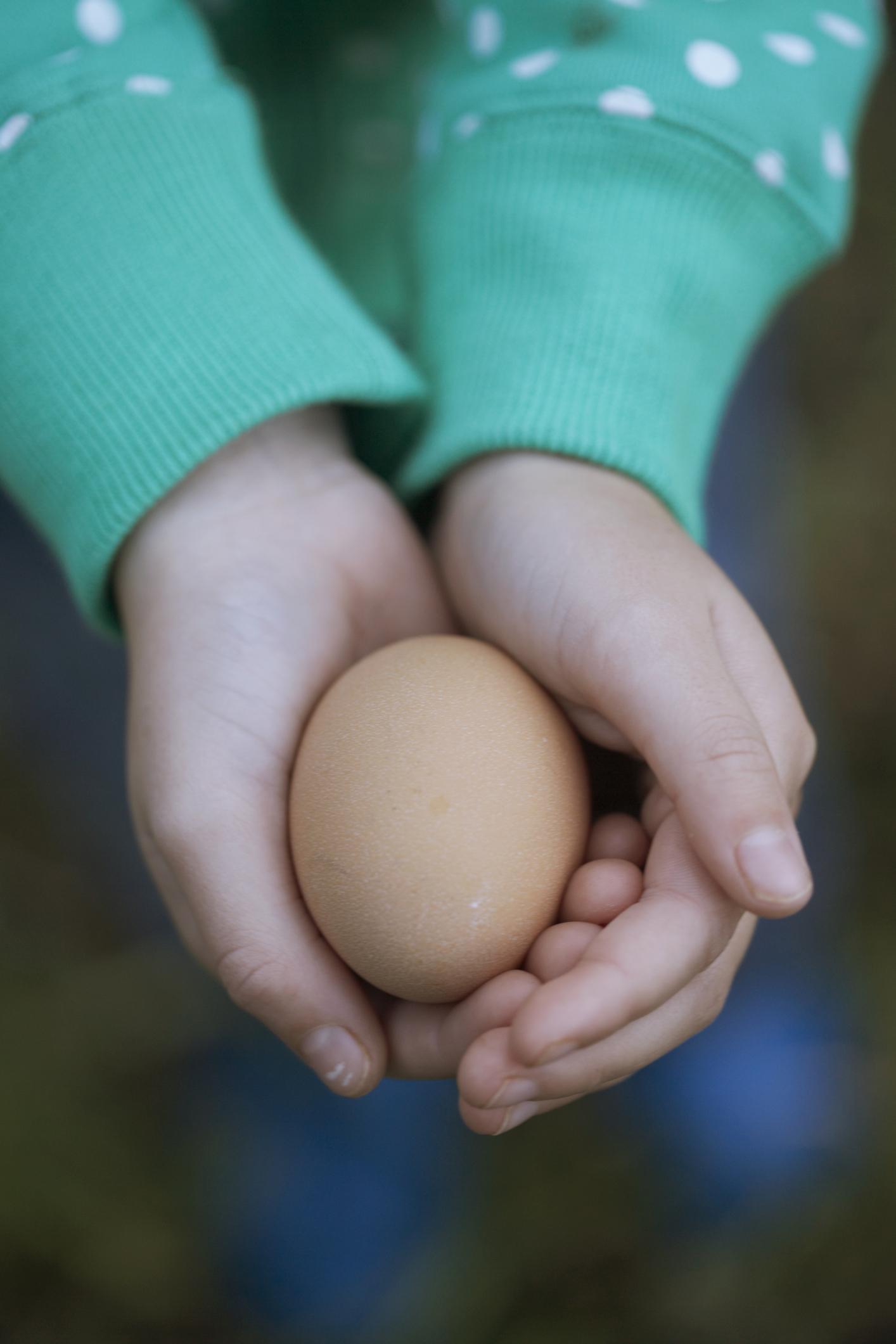 Egg Float In Water Salt Water Or Juice 18