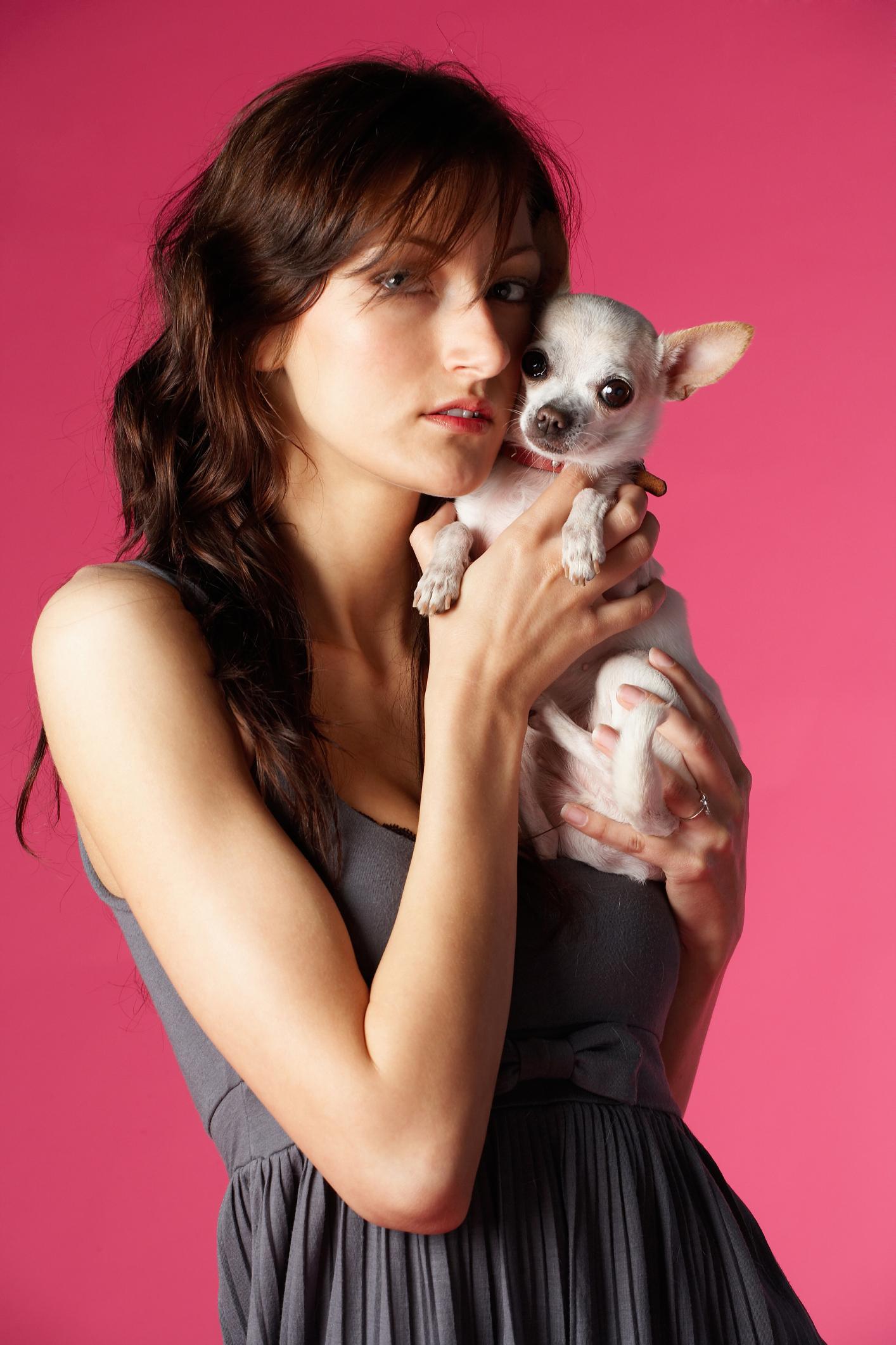 Signos De Un Parto De Chihuahua