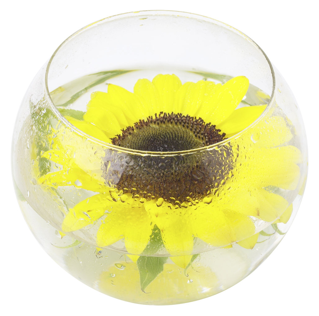 Ideas For Sunflowers At Bridal Showers