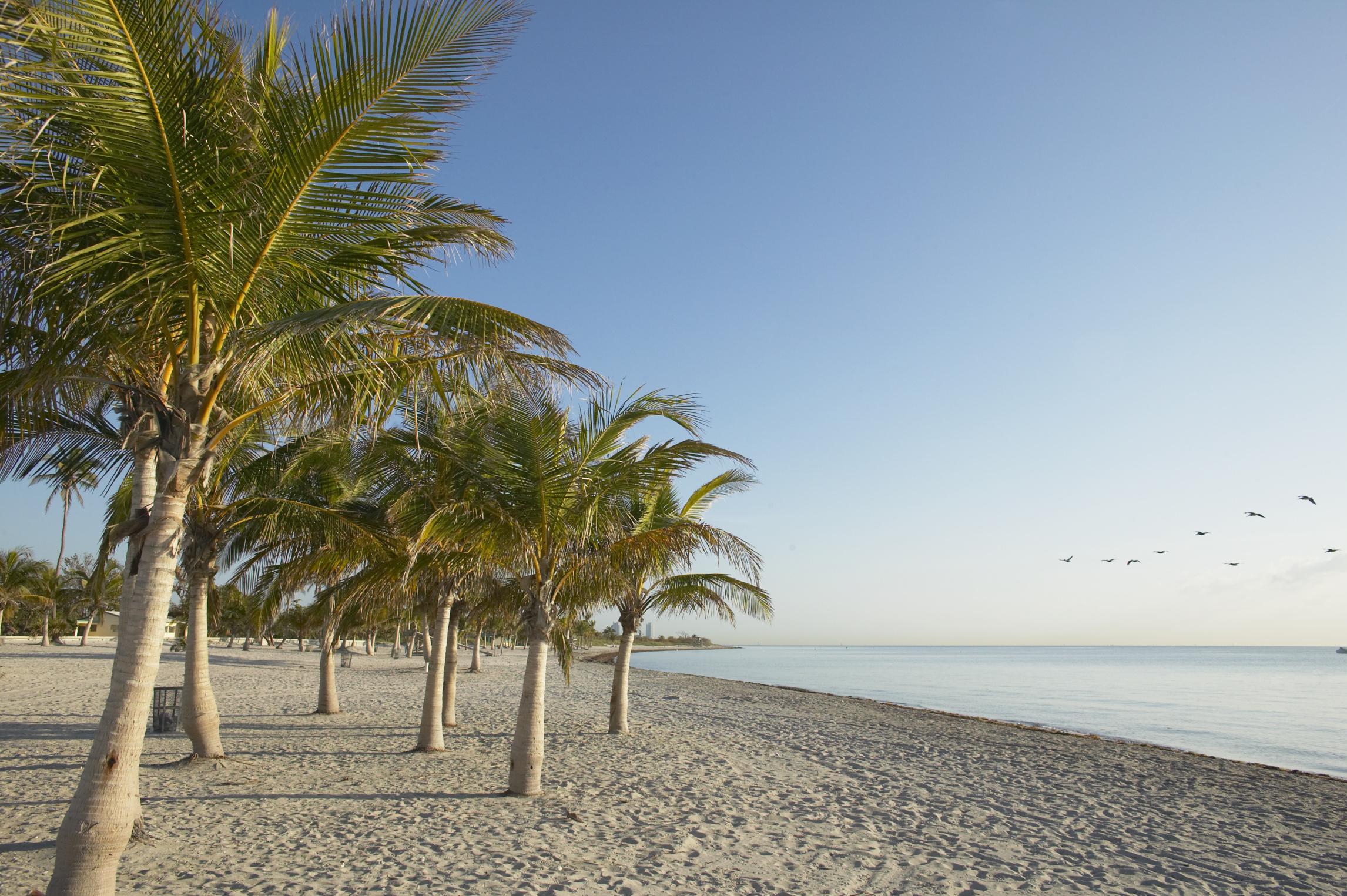 Beach Rv Parks In Florida Usa Today