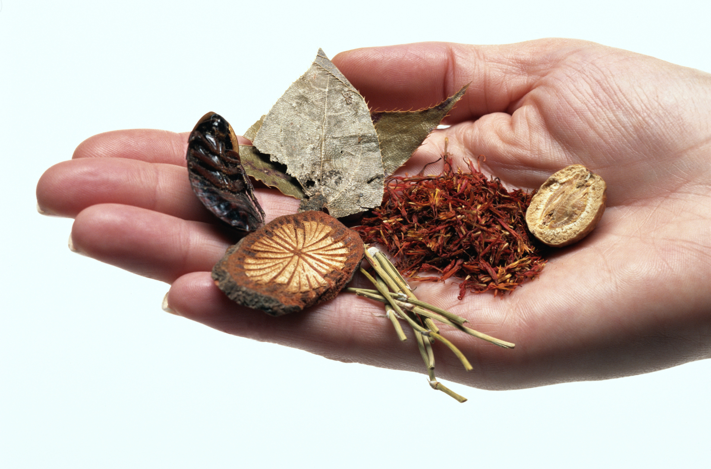 Dried herbs can add just as much flavor as salt.