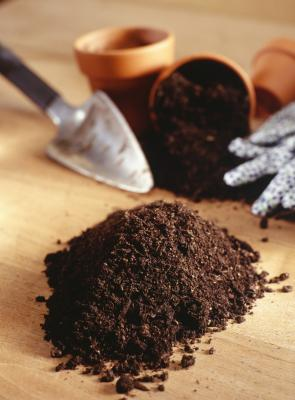 How Long Does Potting Soil Last Home Guides Sf Gate