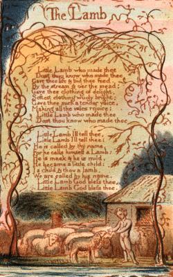 a poison tree theme essay