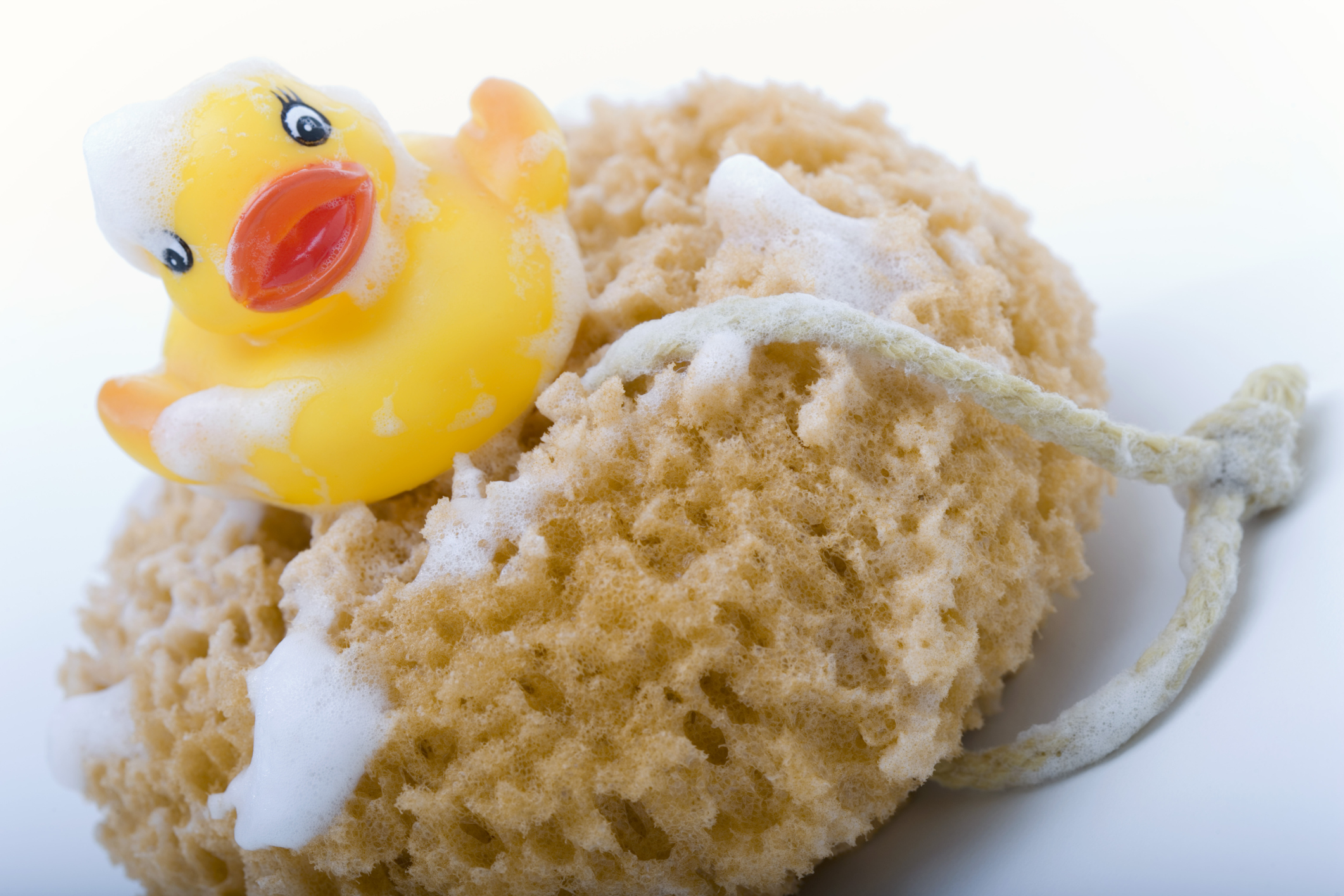 How To Disinfect A Loofah Our Everyday Life