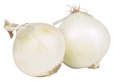 growing onions from a cutting home guides sf gate