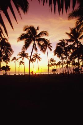 How to book hawaii on southwest