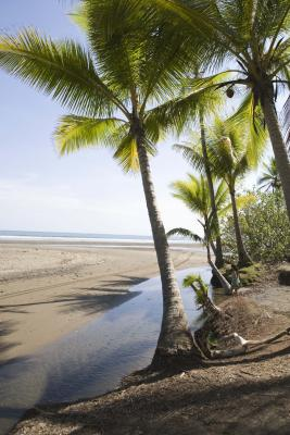 Costa Rica Vacations >> Costa Rica Vacations for Singles | USA Today