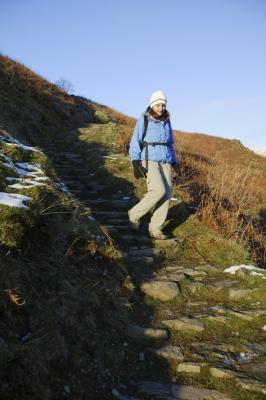 Garden Stepping Stones Path