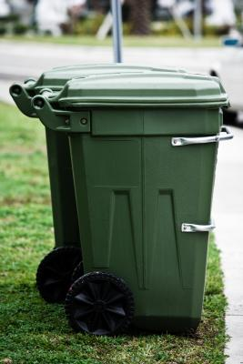 how to get rid of maggots in green bin