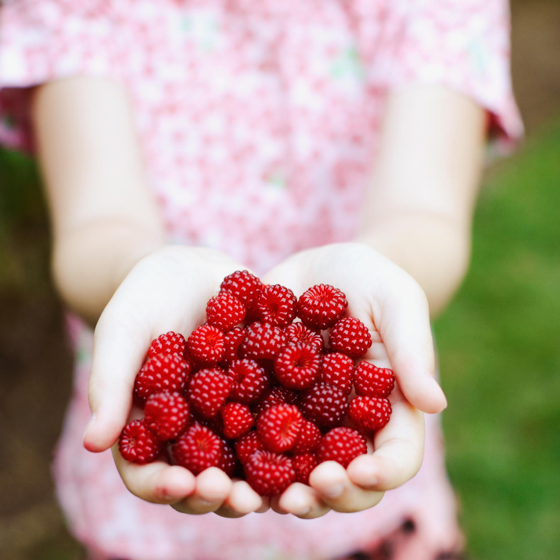 The Benefits of Raspberries   Healthy Eating