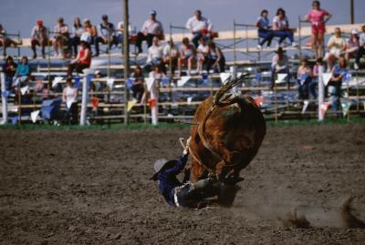 How Much Does A Rodeo Clown Make Per Year Chron Com