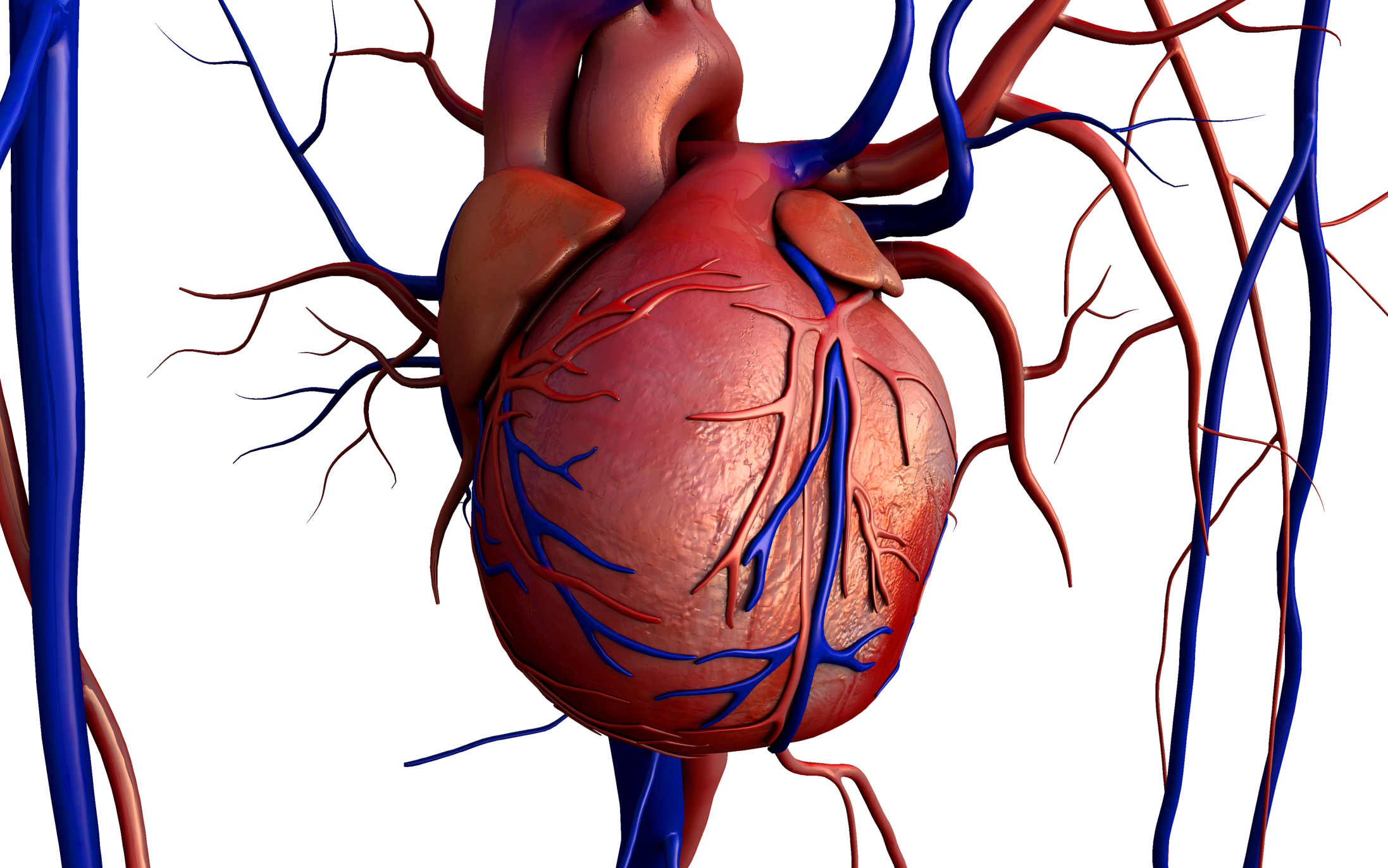 Blood Vessels That Carry Blood Away From the Heart | LIVESTRONG.COM