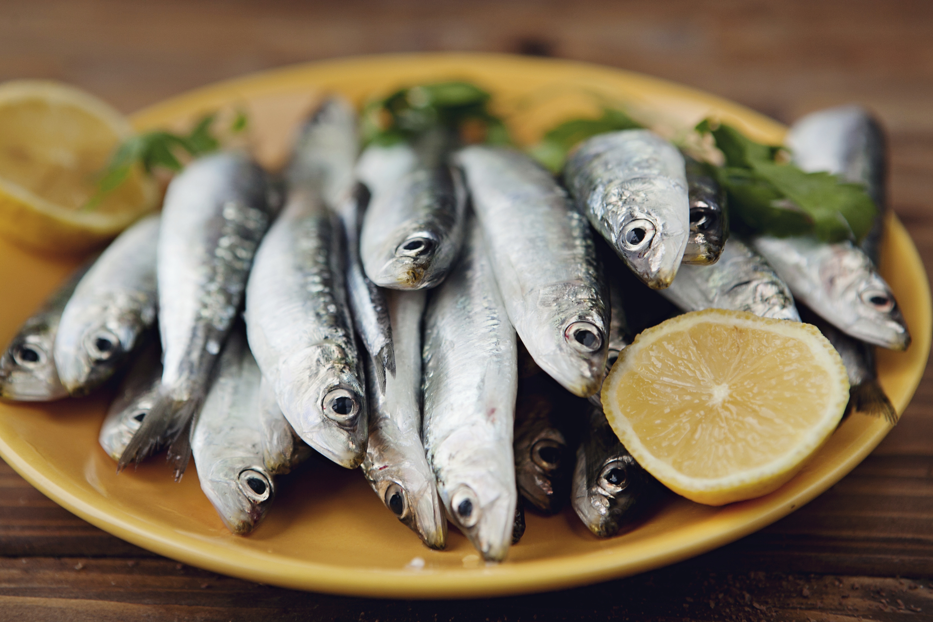 Whiting fish: benefits and harm to the body 76