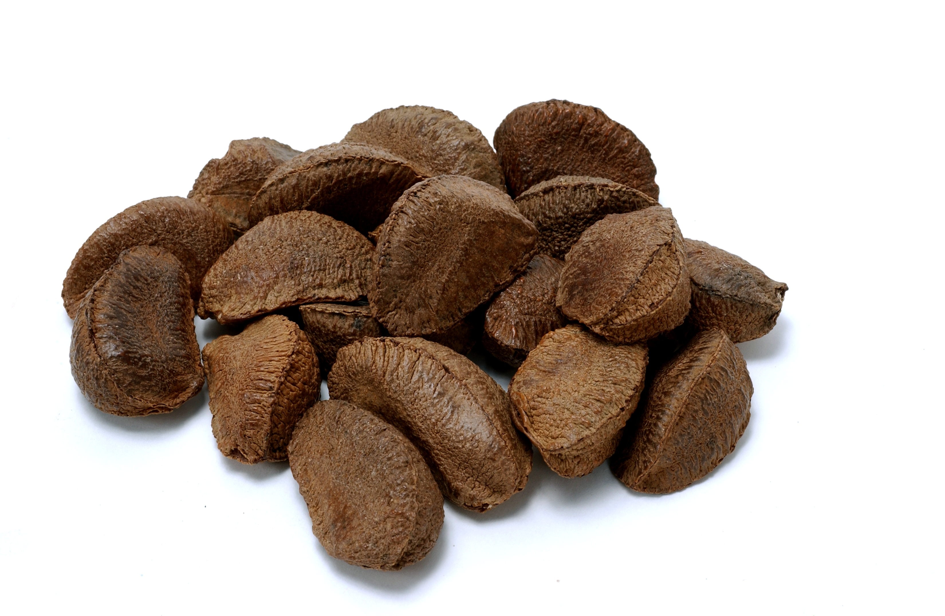 how to eat hickory nuts