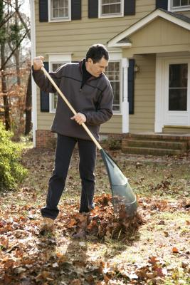 A Cheap Fix to Cover Up Dirt in a Backyard | Home Guides ...