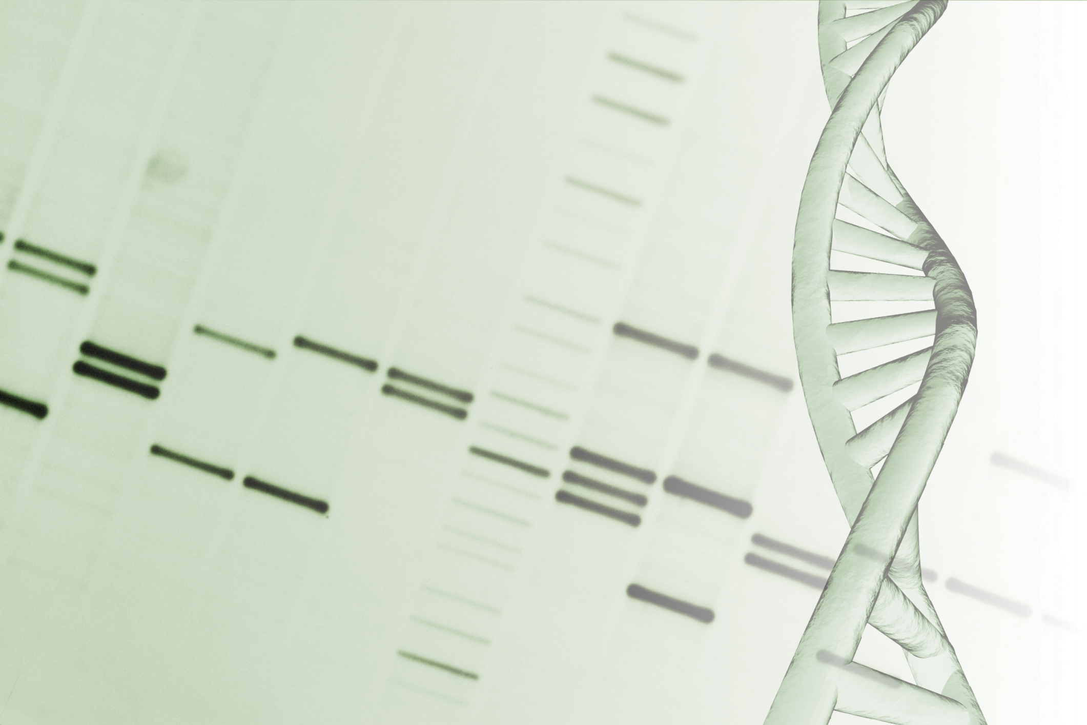 How to Calculate RNA Concentration