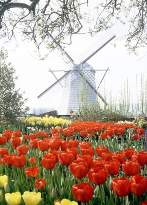 Ideas To Paint A Metal Garden Windmill