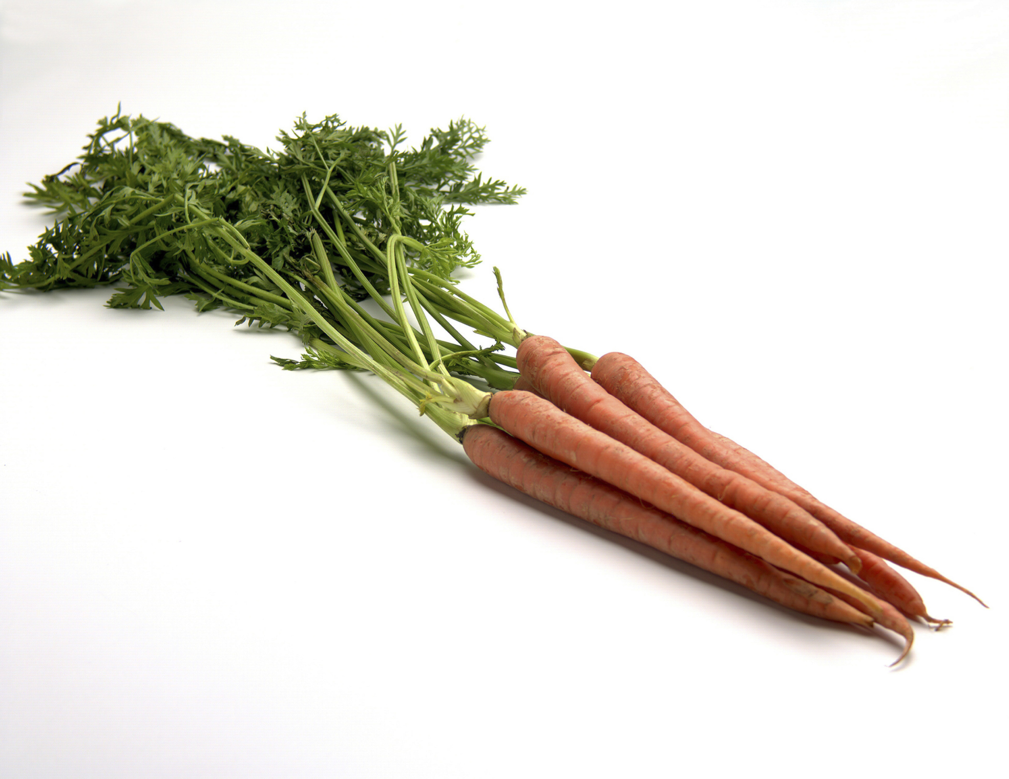 can beta carotene change your skin color livestrong com