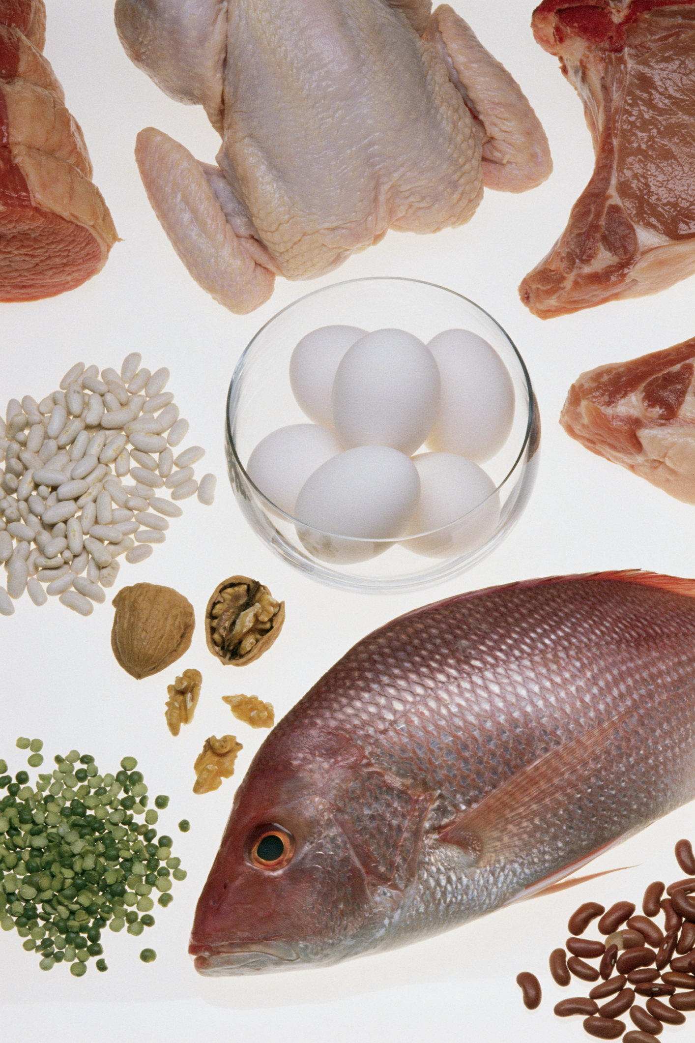 A high-protein diet can help support fat loss.