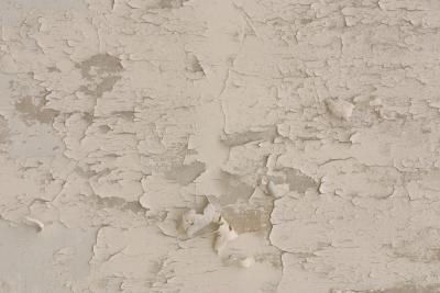 Mold In Shower Paint paint keeps peeling on a shower ceiling | home guides | sf gate