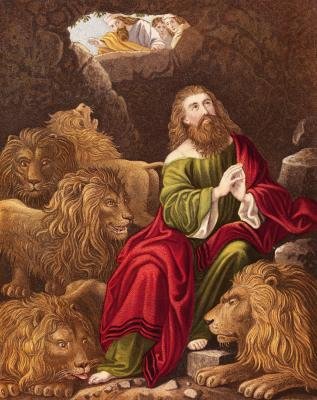 an examination of the book of daniel in the bible Historical criticism for its contribution to the knowledge of the bible and the world   the book of daniel is comprised of two genres, tales in chapters 1-6, and.
