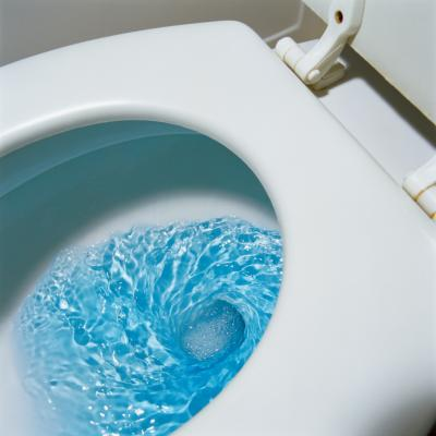 How To Clean A Moldy Toilet Bowl Home Guides Sf Gate