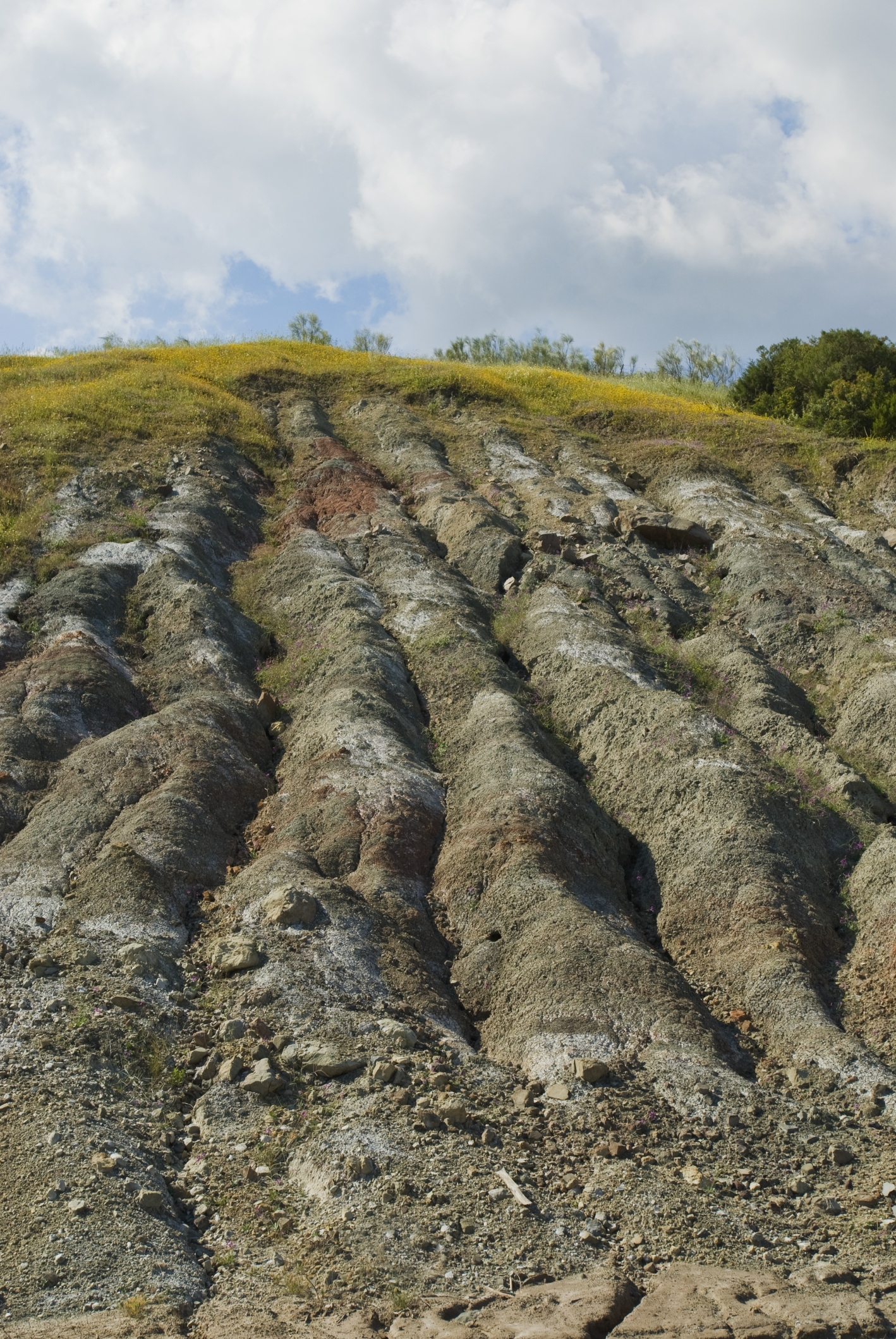 The effects of soil erosion sciencing for Soil erosion causes