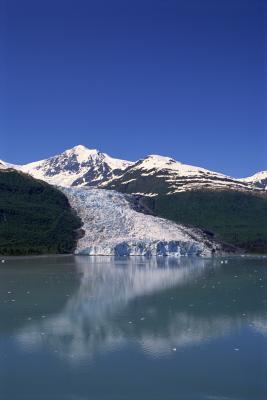 Alaska Nature Cruises With Hiking Amp Kayaking Usa Today