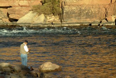 Tours at lake powell utah usa today for Lake powell fishing license