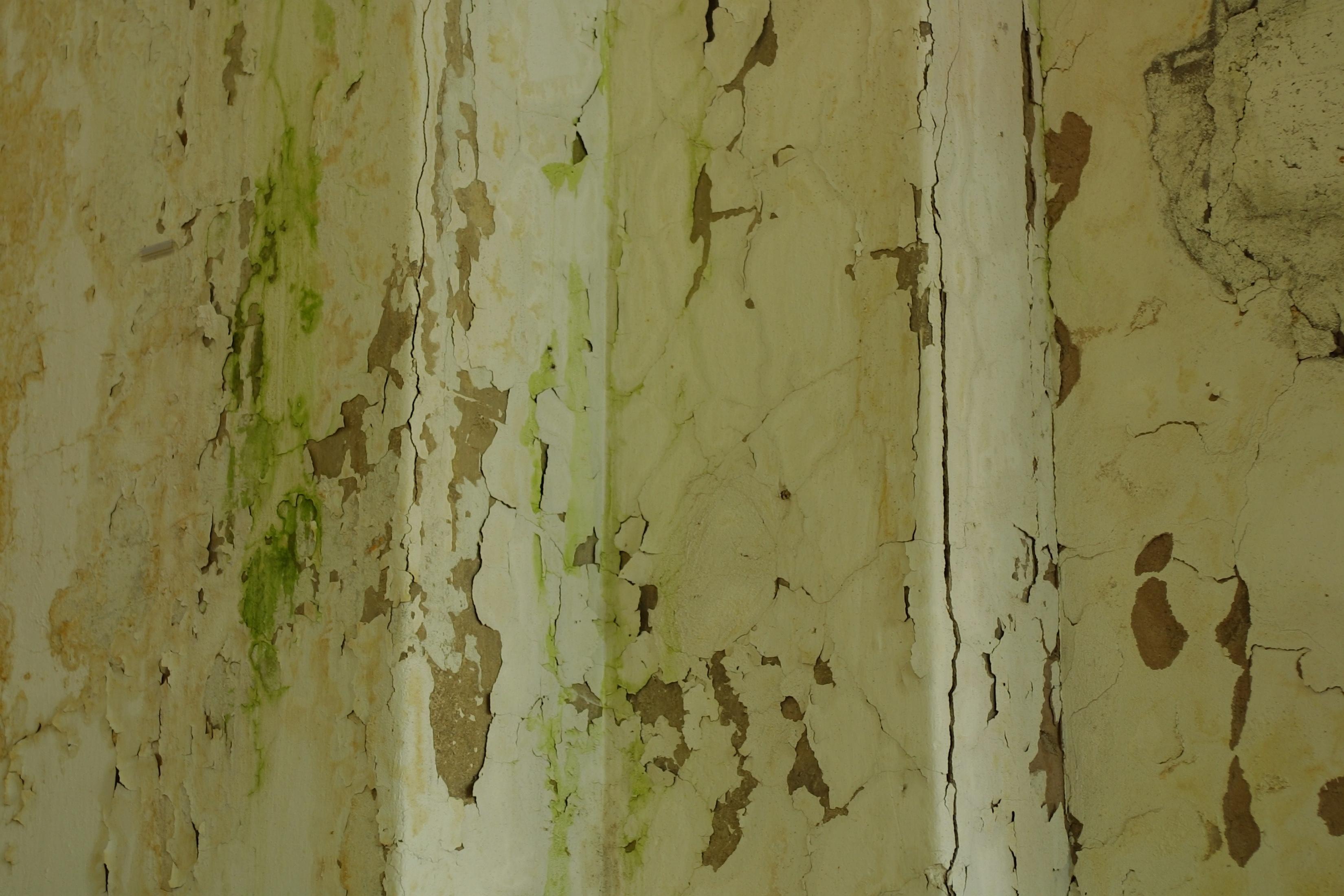Reparar Pared Exterior Necesito Reparar Los Bajos De Una Casa