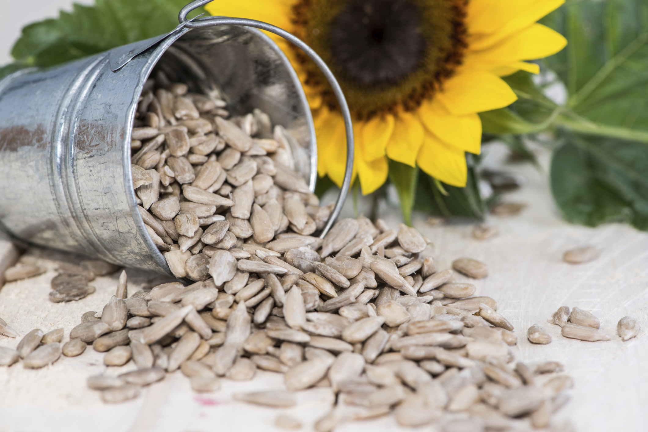 How to fry sunflower seeds 66