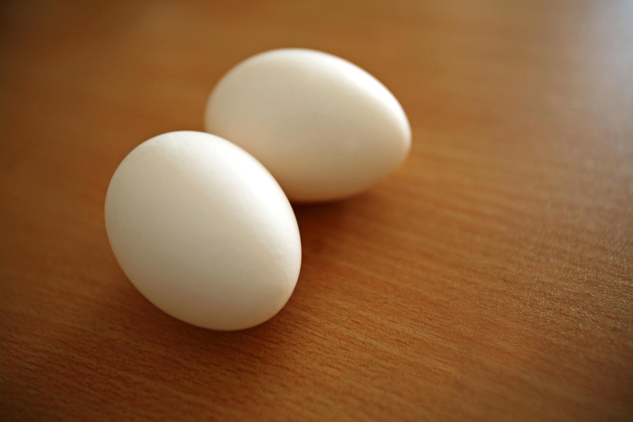 Turkey eggs: benefit and harm