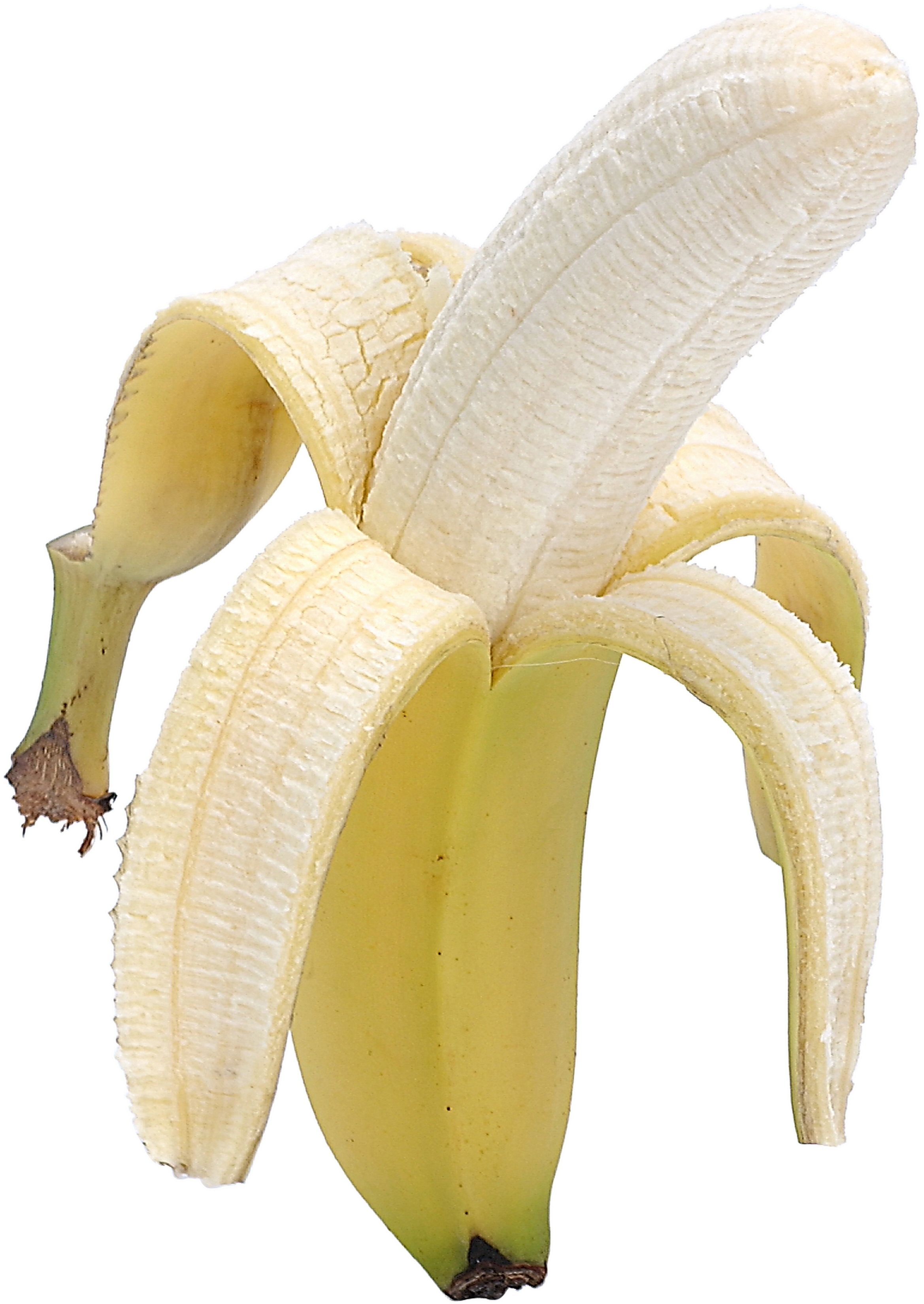 A small banana has more potassium than a spear of broccoli.