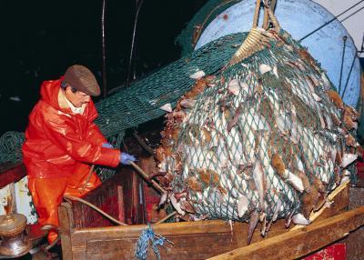 the average salary of a deep sea fisherman