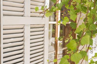 How To Remove The Shutters From A House Home Guides Sf