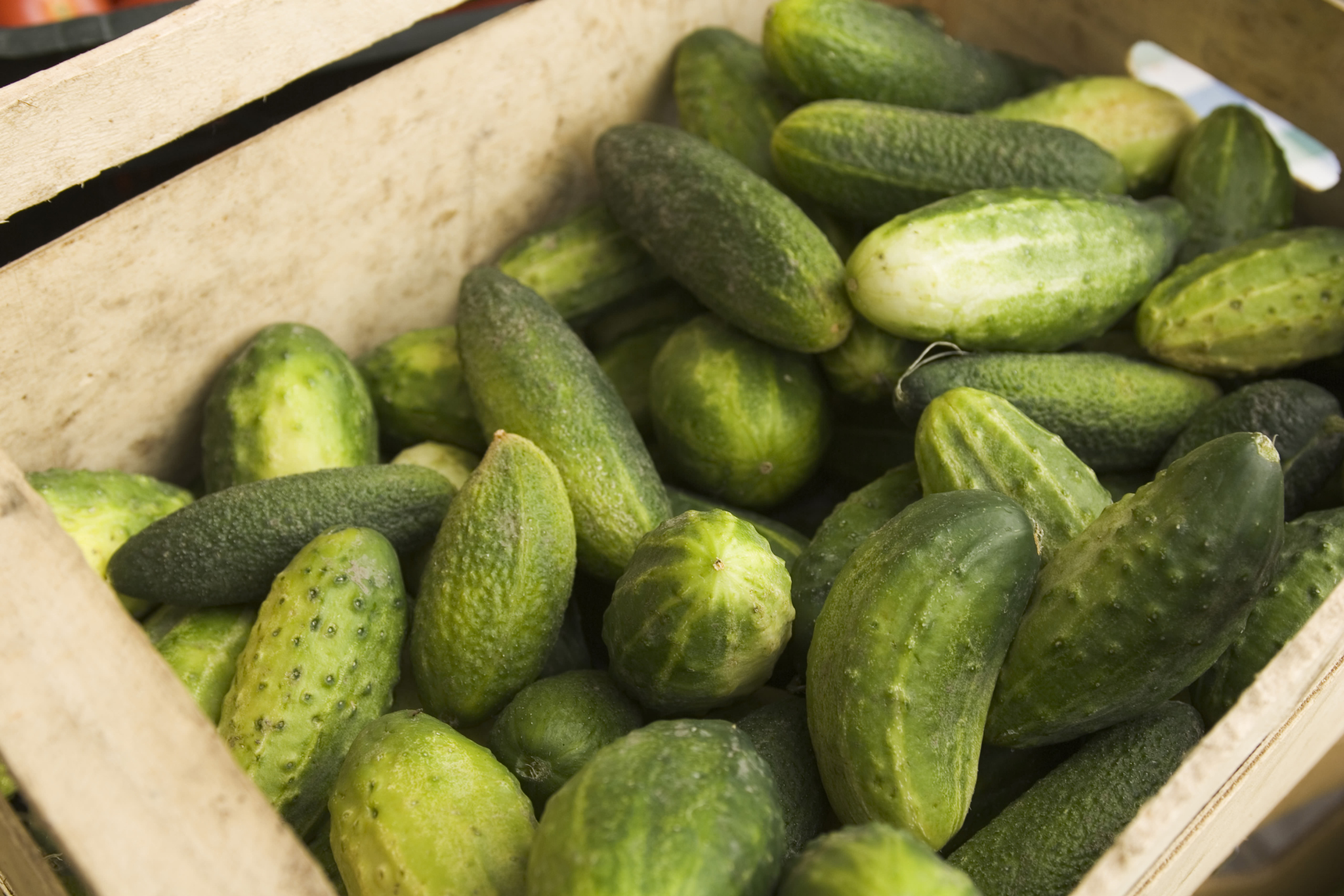 Cucumber diet: reviews, effects, uses