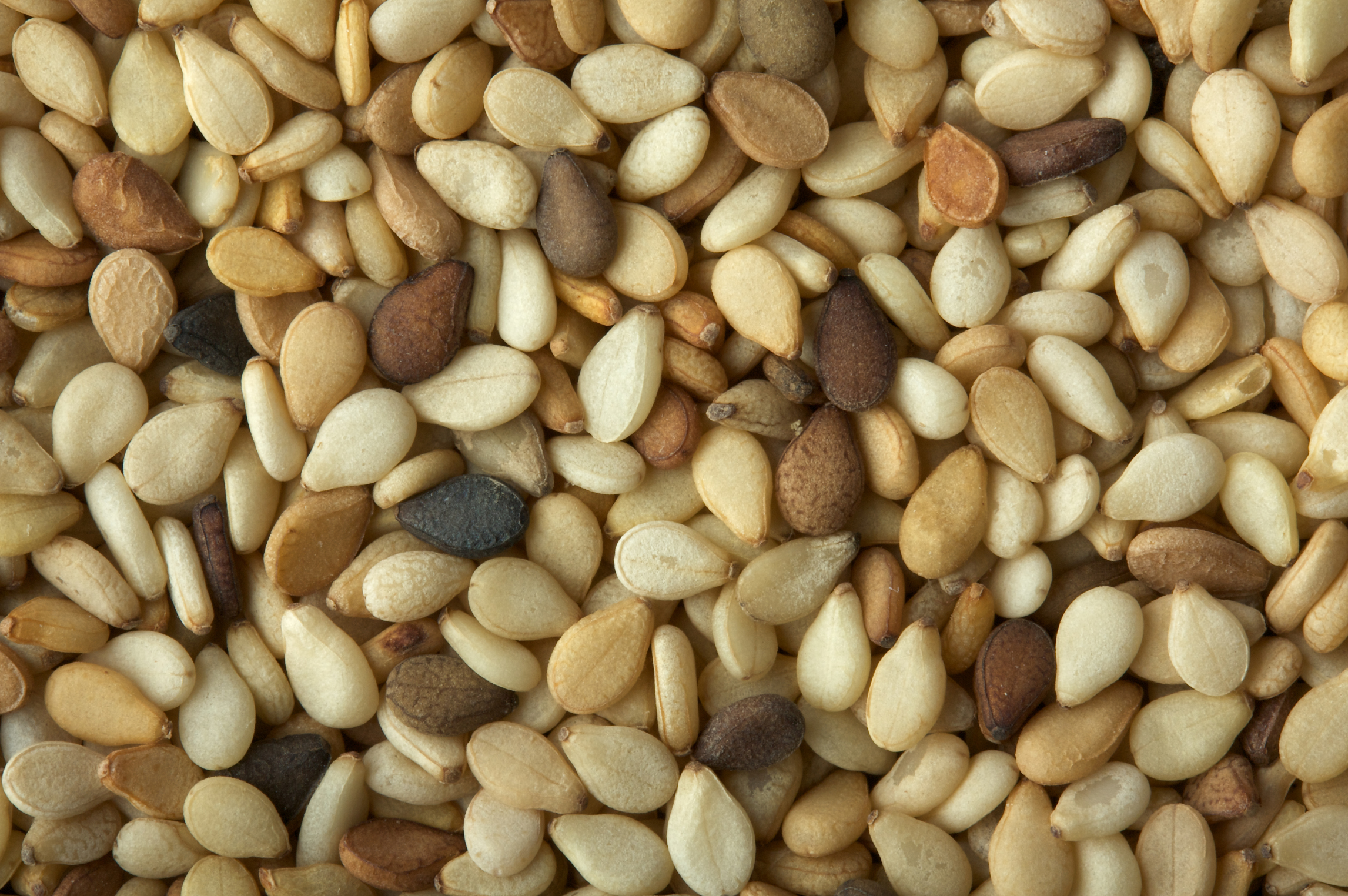 How many calories in seeds 54
