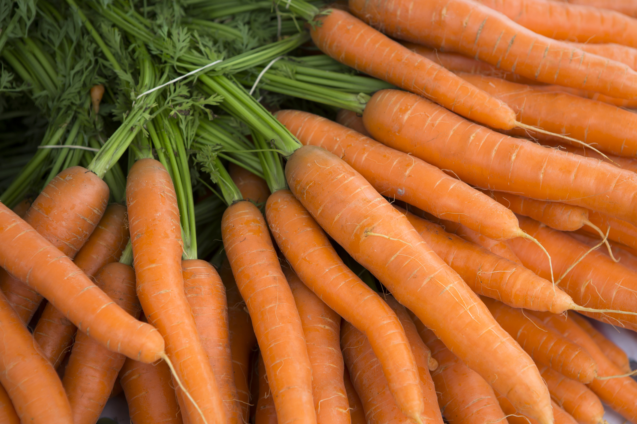 How many calories in carrots 26