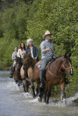 Michigan Horse Riding Ranches Usa Today