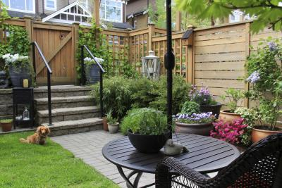 Tall plants for pots in a sunny wet area home guides - Jardinera grande barata ...