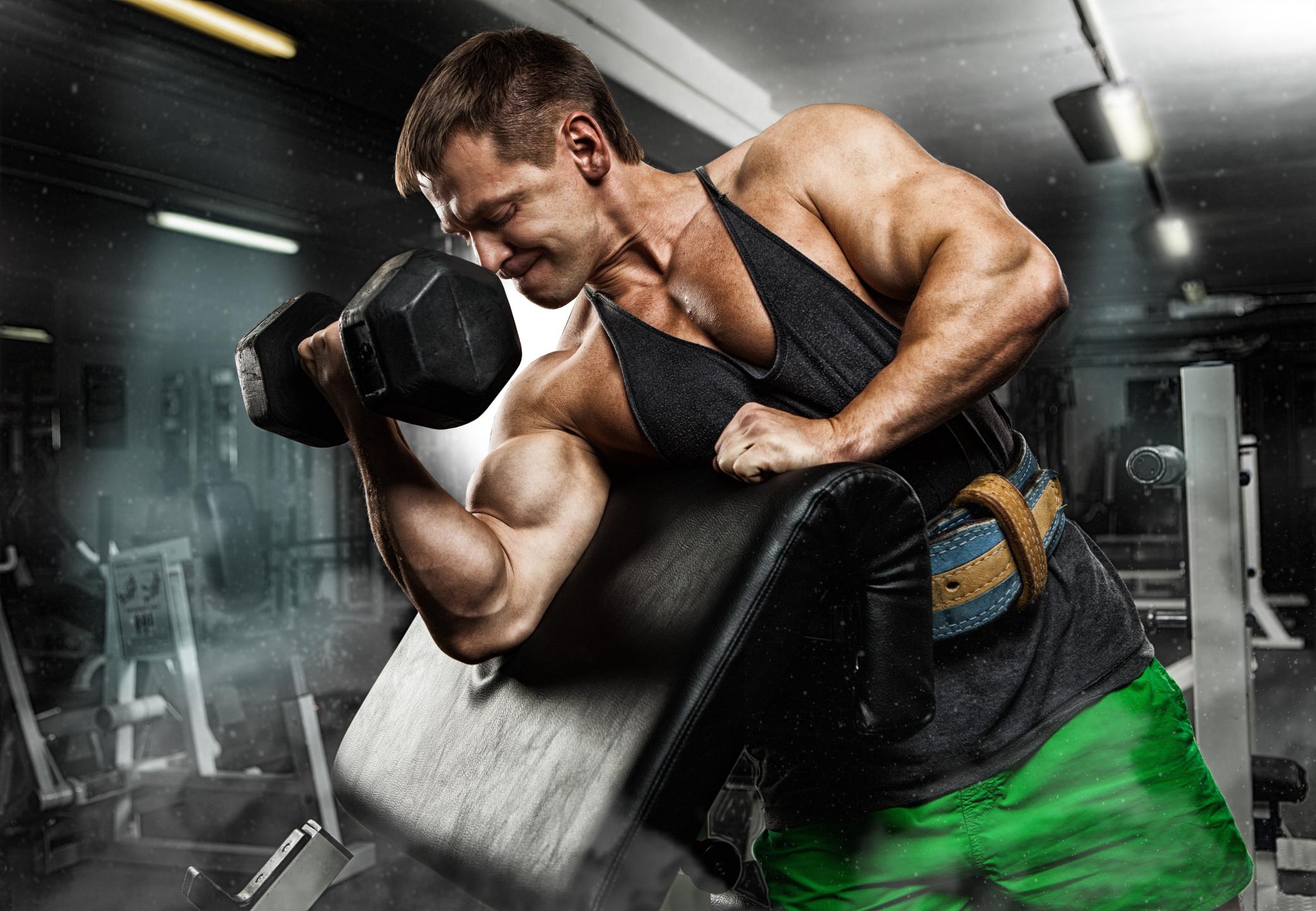 Fantastisch Bicep Anatomy Bodybuilding Ideen - Menschliche Anatomie ...