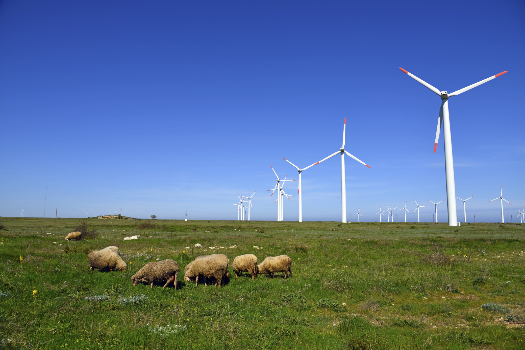 How Much Power Does a Wind Turbine Generate?