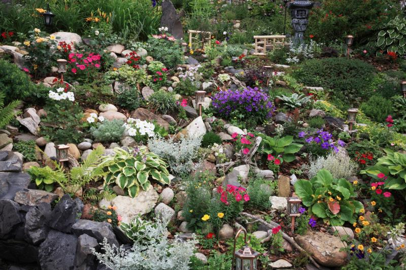 Plants For Rockery Gardens Home Guides Sf Gate