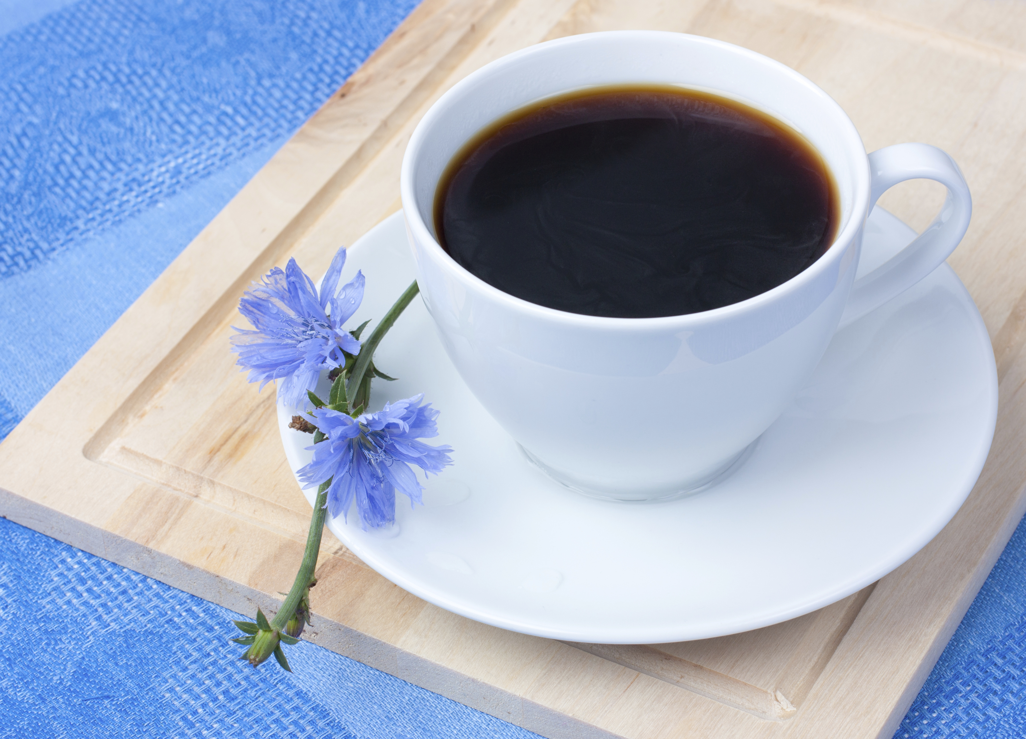 What is chicory Is it useful to drink it instead of coffee