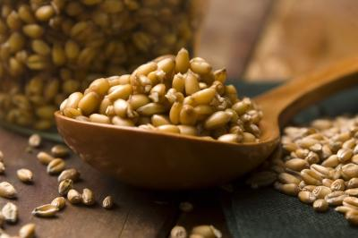 Wheat germ benefits and side effects