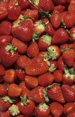 How To Grow Strawberries Using A Tire Pyramid Home