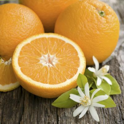 Foods To Eat When Sick With Stomach Flu