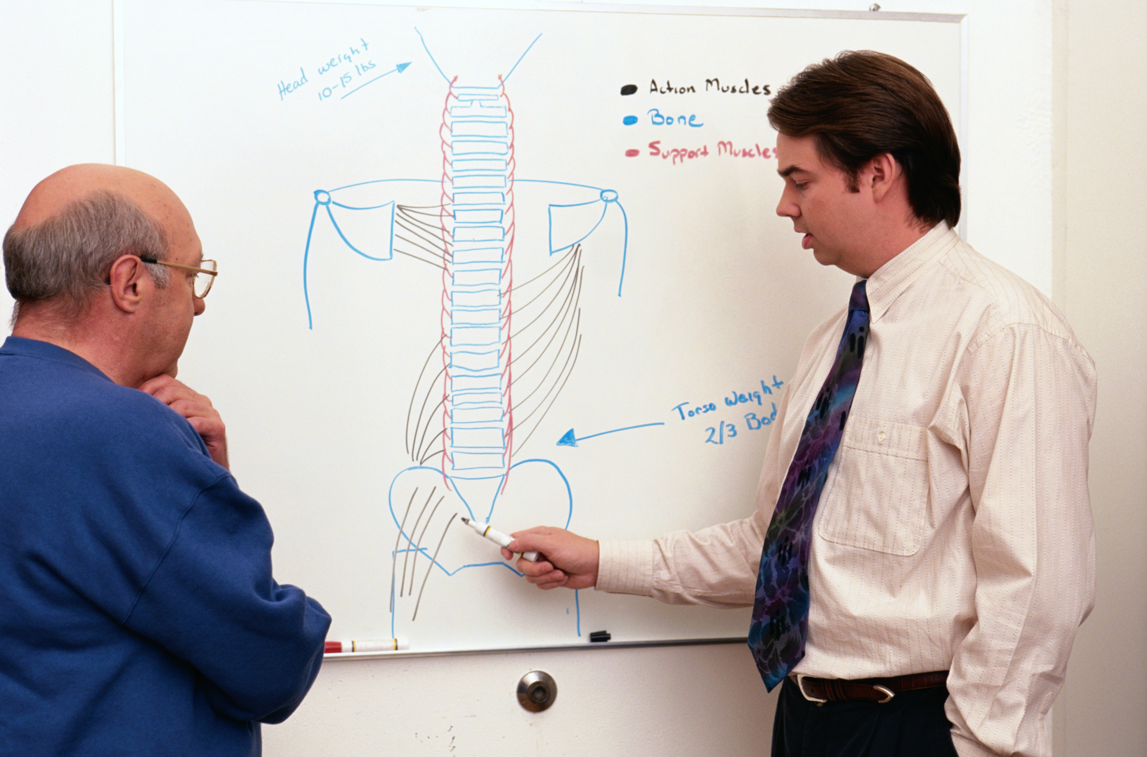 Duties of a Hepatologist   Career Trend