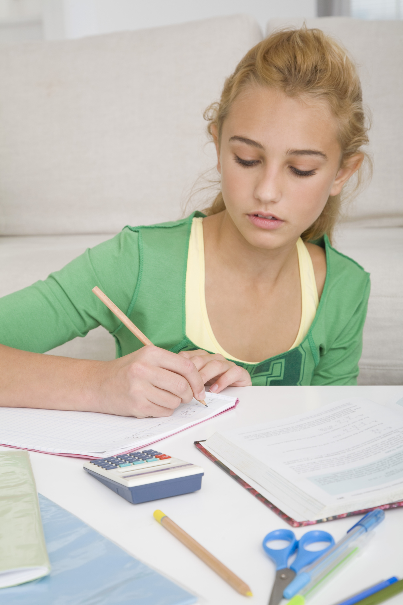 Academic weakness essay