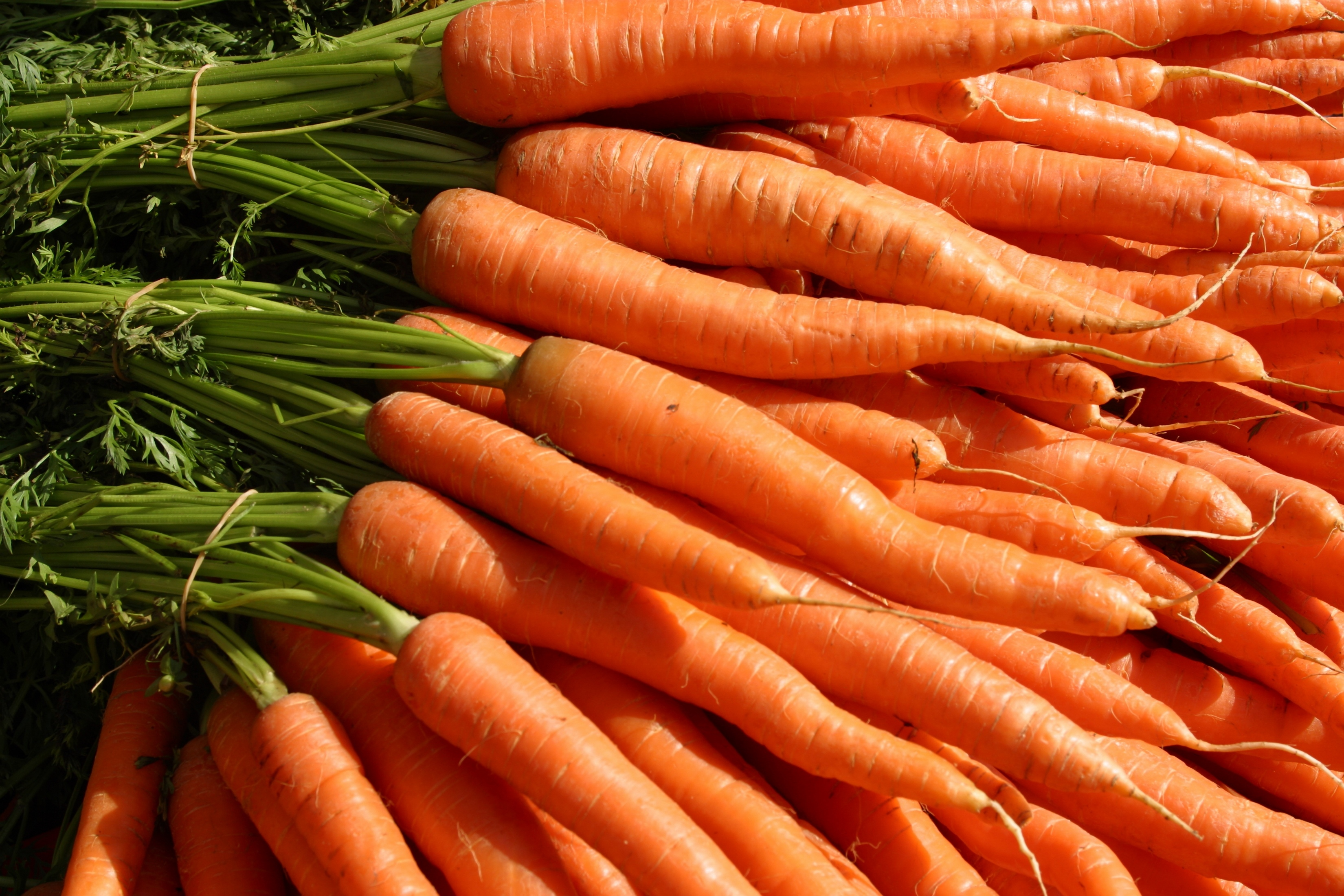 Calculate caloric content: carrots - a dietary product 59